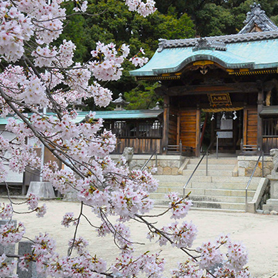 桜と八幡社